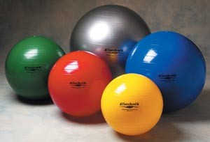 Hygenic/Thera-Band Exercise Balls